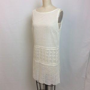 Small Semi Sheer Straight Dress BB Dakota